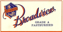 broadview-ice-cream-logoaa