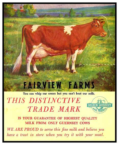 fairview-farms-golden-guernseya